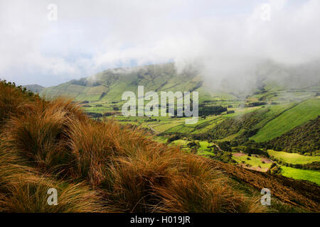 hilly fields in the south of the island with mist, Portugal, Azores, Flores - Stock Photo
