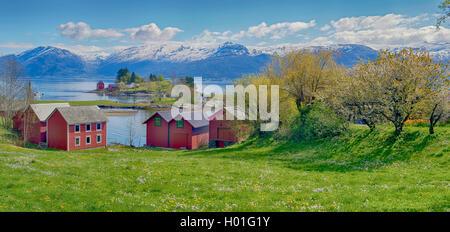 Gemeinde Oma am Hardangerfjord im Fruehling, schneebedecktes Gebirge im Hintergrund, Norwegen, Hardanger | small - Stock Photo