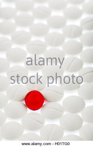 BLWX013358 [ (c) blickwinkel/McPHOTOx/Erwin Wodicka Tel. +49 (0)2302-2793220, E-mail: info@blickwinkel.de, Internet: - Stock Photo