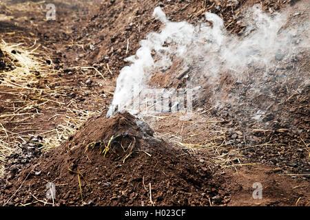 kleiner qualmender Kohlenmeiler, Deutschland, Nordrhein-Westfalen, Ruhrgebiet, Ennepetal | smoking charcoal pile, - Stock Photo