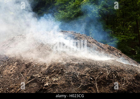 qualmender Kohlenmeiler, Deutschland, Nordrhein-Westfalen, Ruhrgebiet, Ennepetal | smoking charcoal pile, Germany, - Stock Photo