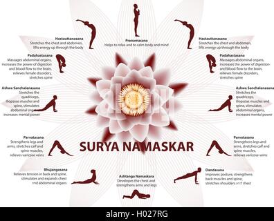 yoga infographics surya namaskar sequence stock vector