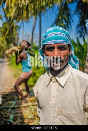 HAMPI, INDIA - 28 JANUARY 2015: Portrait of Indian worker with second worker loading sugarcane on truck - Stock Photo