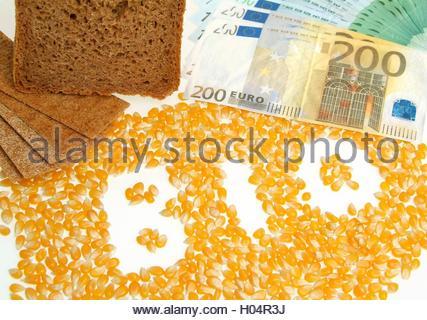 BLWX025640 [ (c) blickwinkel/McPHOTOx/Foto Begsteiger Tel. +49 (0)2302-2793220, E-mail: info@blickwinkel.de, Internet: - Stock Photo