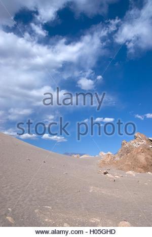 BLWX028948 [ (c) blickwinkel/McPHOTOx/Foto Begsteiger Tel. +49 (0)2302-2793220, E-mail: info@blickwinkel.de, Internet: - Stock Photo
