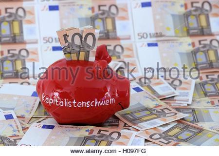 BLWX056046 [ (c) blickwinkel/McPHOTOx/Ingo Schulz Tel. +49 (0)2302-2793220, E-mail: info@blickwinkel.de, Internet: - Stock Photo