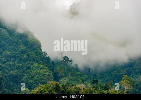 Karst mountains shrouded in clouds, rainforest, Nong Khiaw, Luang Prabang, Laos - Stock Photo