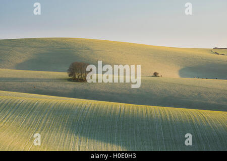 The rolling countryside of the South Downs National Park near Ditchling, East Sussex, England, UK - Stock Photo