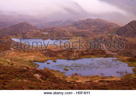The tarns on the summit plateau of Haystacks - Stock Photo