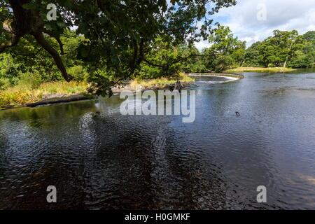 Horseshoe Falls on the river Dee which helps to control the flow of water into the Llangollen Canal - Stock Photo