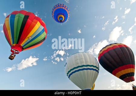 Hot air balloons above Ann Morrison Park in the 'Spirit of Boise Balloon Classic' in September 2016 - Stock Photo