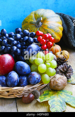 Autumn fruits assortment with grapes, plums, apples and walnuts  and decorative pumpkins - Stock Photo