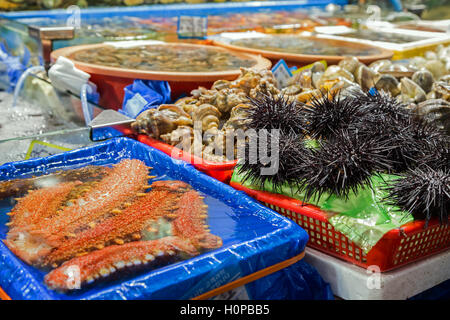 Sea cucumbers, sea urchins and other seafood being sold at the Noryangjin Fisheries Wholesale Market in Seoul, South - Stock Photo