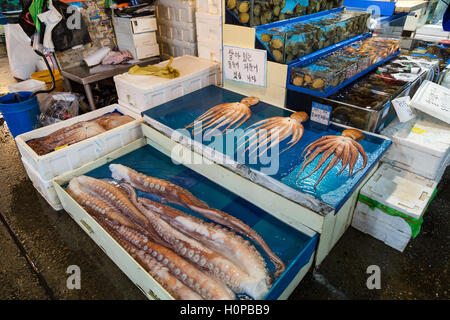 Fresh octopus for sale at the Noryangjin Fisheries Wholesale Market (or Noryangjin Fish Market) in Seoul, South - Stock Photo