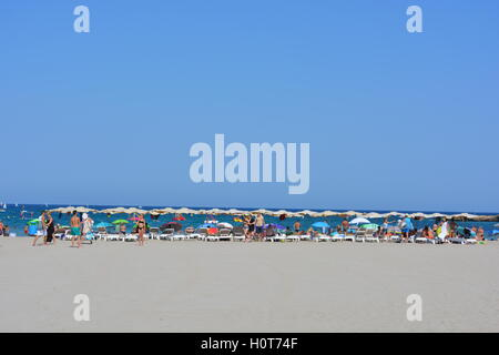 Deckchairs, sunshades and crowds on the Arenal in summer, in the resort town of Javea on the Costa Blanca, Spain. - Stock Photo
