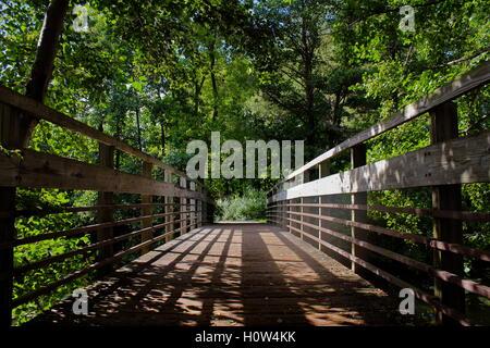 Bridge over a river into the trees. - Stock Photo