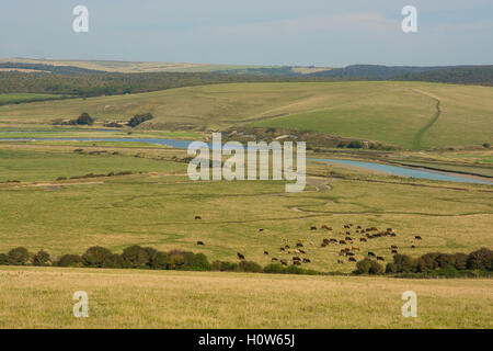 The River Cuckmere estuary with meanders at Cuckmere Haven in East Sussex, England - Stock Photo