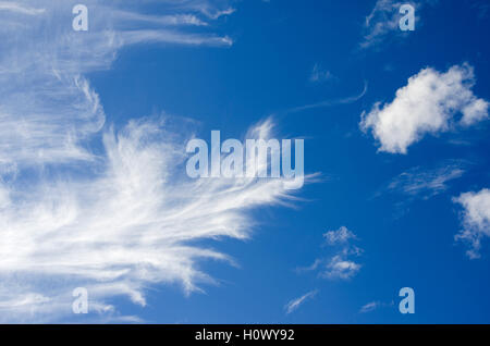 Beautiful blue sky with wispy clouds, summer sky. Beautiful clouds, cotton wool clouds. Dreamy, - Stock Photo