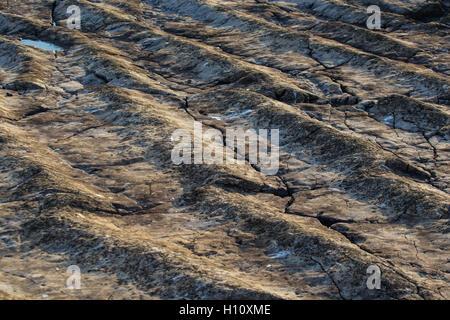 Unique Ocean Floor fossil on Flat Holm Island - Stock Photo