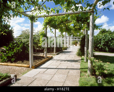 Vine walk and herb beds of replica 1st-century AD garden, Fishbourne Roman Villa, West Sussex, England, UK - Stock Photo
