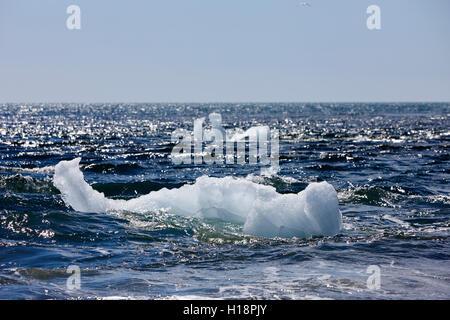Icebergs washing up on black sand beach at jokulsarlon iceland - Stock Photo