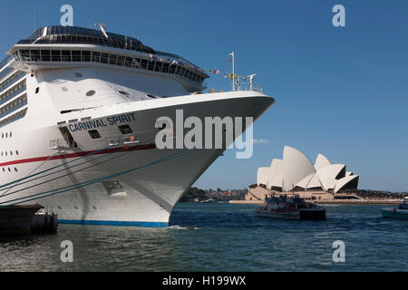Bow of Carnival Spirit Cruise Ship berthed at the Overseas Passenger Terminal and the Sydney Opera House Sydney - Stock Photo
