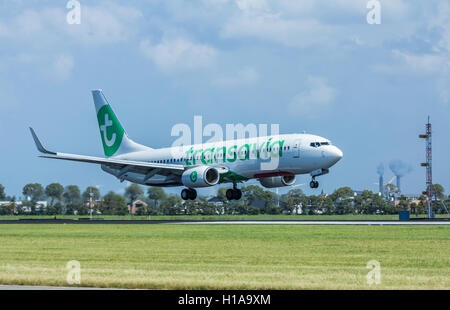 Schiphol Airport, the Netherlands - August 20, 2016: Transavia boeing 737 passenger aircraft landing - Stock Photo