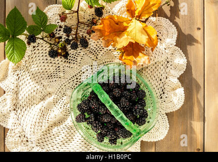 Vintage green glass basket dish full of juicy blackberries with oak leaves and blackberry sprigs on crocheted lace - Stock Photo