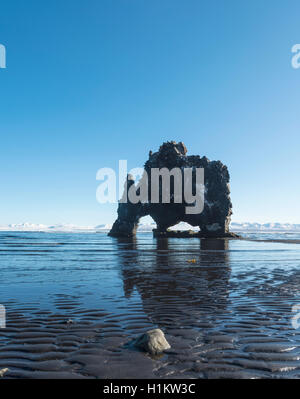 Hvitserkur, Elephant Rock on lava beach, natural basalt rock formation, Northwestern Region, Iceland - Stock Photo