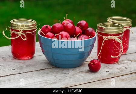 Fresh crabapples and crabapple jelly. - Stock Photo