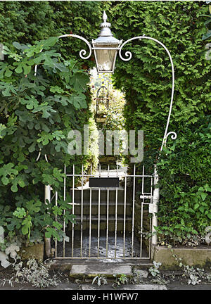 ... Rustic Garden Gate With Antique Lamp.   Stock Photo