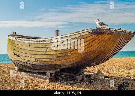 Ship Shape Here Matey. A seagull sitting on a decrepit old boat - Stock Photo