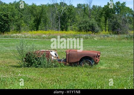 rusting car in grassy field - Stock Photo