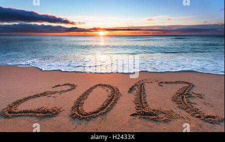 2017 written in sand, on tropical beach - Stock Photo