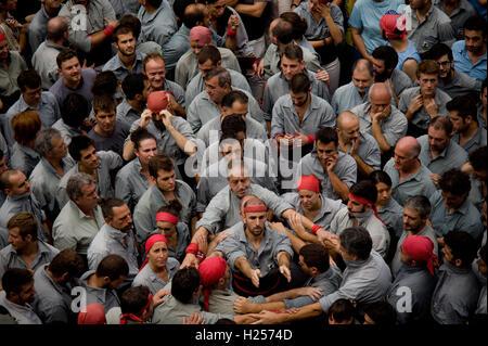 Barcelona, Spain. 24th Sep, 2016. September 24, 2016 - Barcelona, Catalonia, Spain - Castellers get ready to build a human tower during the Jornada Castellera (Human Towers Day) held in Barcelona for La Merce Festival (Festes de la Merce). Credit:  Jordi Boixareu/Alamy Live News