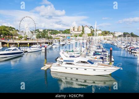 Luxury yachts and boats moored at Torquay Marina Torquay Devon english riviera England UK GB Europe EU - Stock Photo