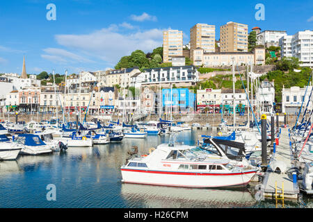 Torquay Marina and harbour Torquay Devon England UK GB Europe EU - Stock Photo