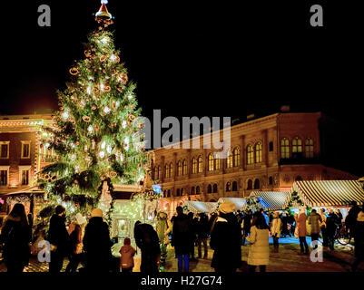 Riga Latvia December 24 2015 People And Christmas Tree At Festive Christmas