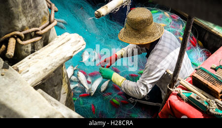 Tien Giang, Vietnam - January 10, 2016: A fisherman is taking his fish from the fishing net in the Mekong river - Stock Photo