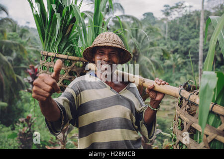 Shot of happy senior farmer giving thumbs up. Senior man smiling and carrying a yoke on his shoulders with seedlings. - Stock Photo
