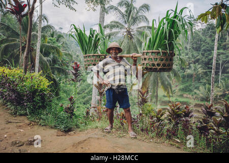 Full length shot of confident old man carrying seedlings on his shoulders. Senior male farmer smiling and posing - Stock Photo
