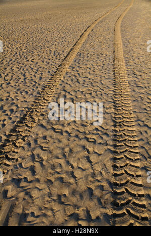 Tyre tracks in wet sand on a beach at sunset - Stock Photo