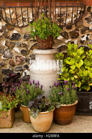Flower Pots and an old milk churn displaying flowering plants - Stock Photo