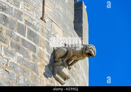 Gargouille,Aigues Mortes, remparts, Gard, France - Stock Photo