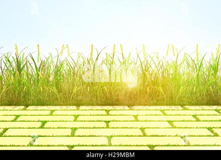 background, grass and tile - Stock Photo