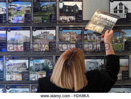 File photo dated 17/02/09 of a woman looking at houses for sale at an estate agents. A young couple can now save - Stock Photo
