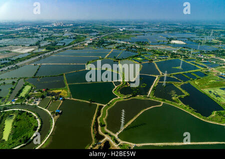 Farmland rice fields under the water in Thailand Aerial photo - Stock Photo