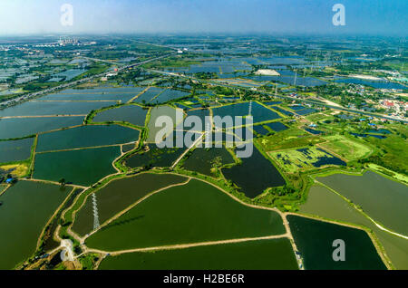 Aerial photo farmland rice fields under the water in Thailand - Stock Photo