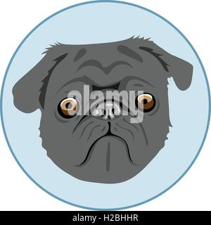 Digital vector pug dog face, in blue circle, flat style - Stock Photo