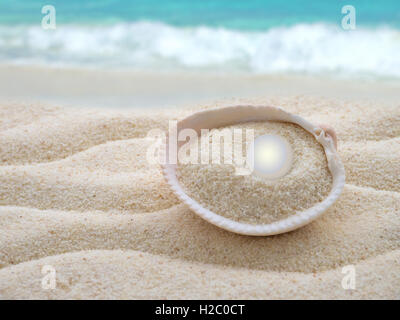 Shiny pearl in the shell on the beach - Stock Photo